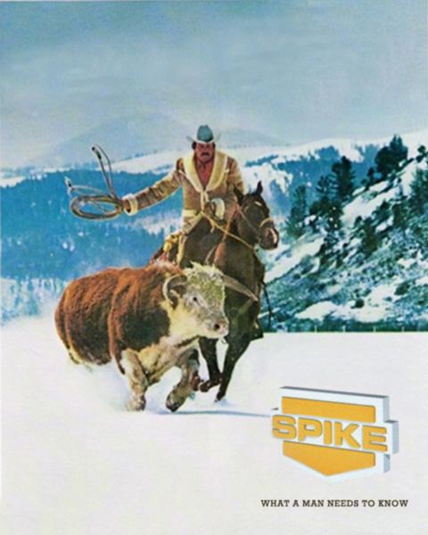 PG-Spike-Cowboy